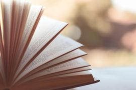 Fundamentos-da-Teoria-Literaria