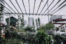 Composicao-paisagistica-de-ambientes-internos