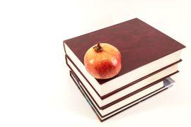 PNLD--Estrategias-Didaticas-para-os-Professores