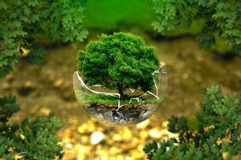 Por-um-Futuro-Viavel--Legislacao-Ambiental-Brasileira