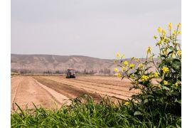 desafios-do-agronegocio-em-um-mundo-globalizado