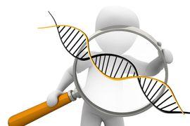 Pais-e-Filhos-Genetica-e-Hereditariedade