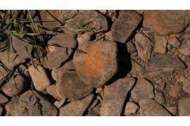 Pre-Historia-e-a-Revolucao-Neolitica