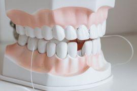 Sistema-Dental--Estrutura-e-Unidades-Biologicas