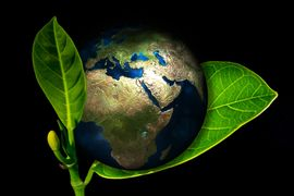 Instrumentos-Economicos-de-Politicas-Ambientais