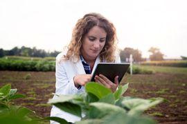 Brasil-Agricola--Importancia-Economica-do-Agronegocio